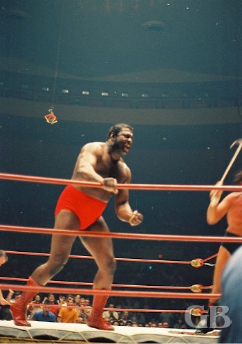 Bobo Brazil charges