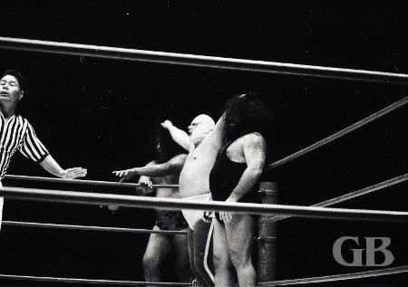 Ripper Collins has the fingers of both of his hands hopelessly tangled in Peter Maivia's and Neff Maiava's hair.