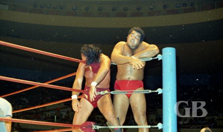 Pedro Morales takes a short breather after slamming Barend's head into the turnbuckle
