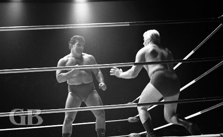 Jim Hady traps Pat Patterson in the corner.
