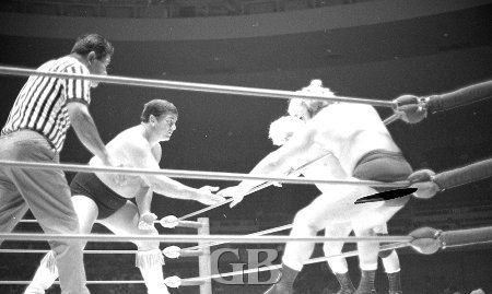 Ray Stevens and Nick Bockwinkel try to lure Wahoo into the corner.