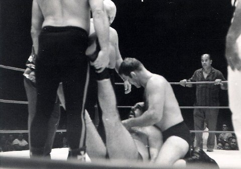 Alaskan being carried from the ring