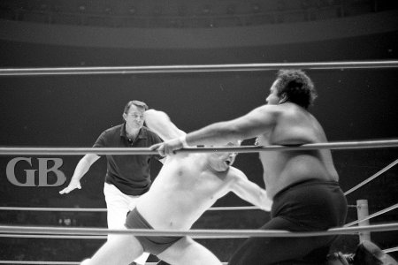 Ray Stevens goes in for the kill against Curtis Iaukea