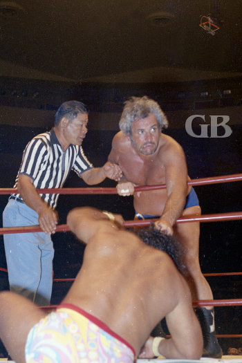 The Sheik attacks as Peter Maivia tries to get back in the ring