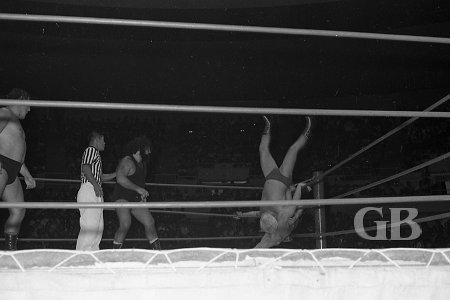 Ray Stevens get thrown into his partner Pat Patterson in the corner.