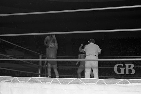 Referee Frank Merrill tries to regain control of the match as all 4 wrestlers battle in the ring.