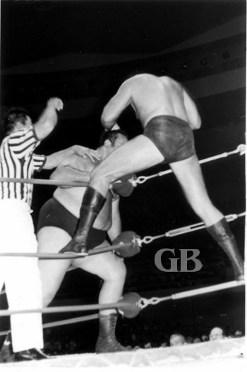 Barend works on Iaukea's forehead while the referee counts.