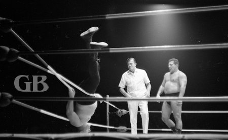 Hady and referee Pete Peterson both watch as Bill Miller bounces around helplessly all tangled in the ropes.